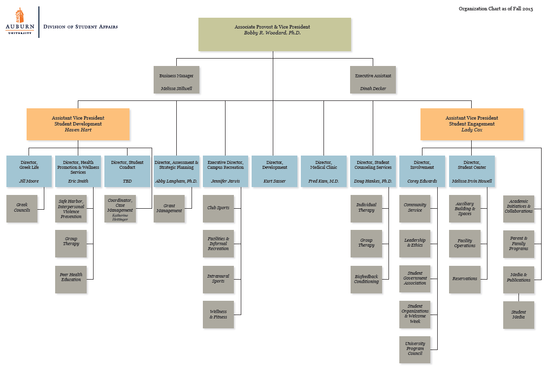 Org chart 2015 student affairs