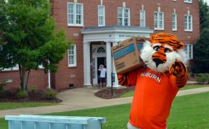 Aubie posing with box in front of residence hall